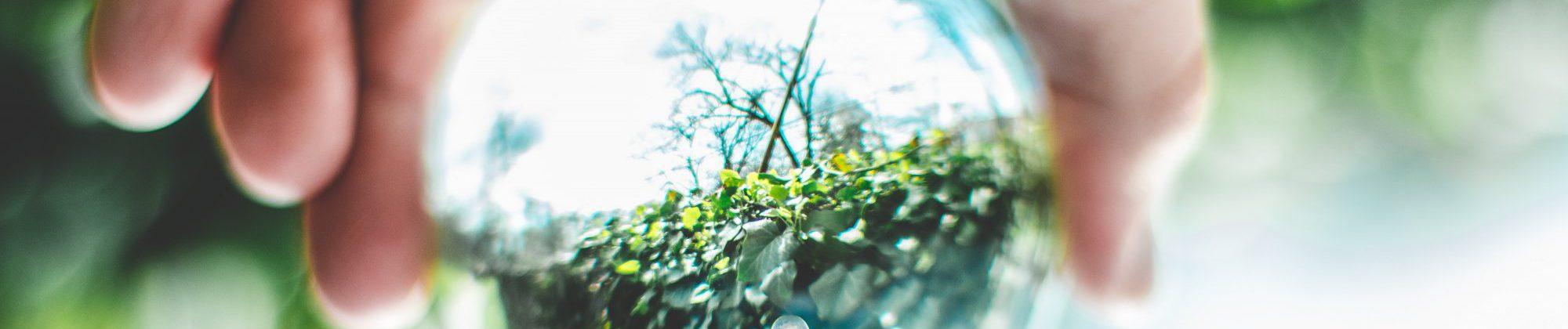 ball-shaped-blur-bokeh-2534493_2000x458_acf_cropped_2000x420_acf_cropped-1